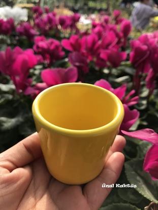 Resim Seramik (Sarı) Saksı (5,5 cm için)